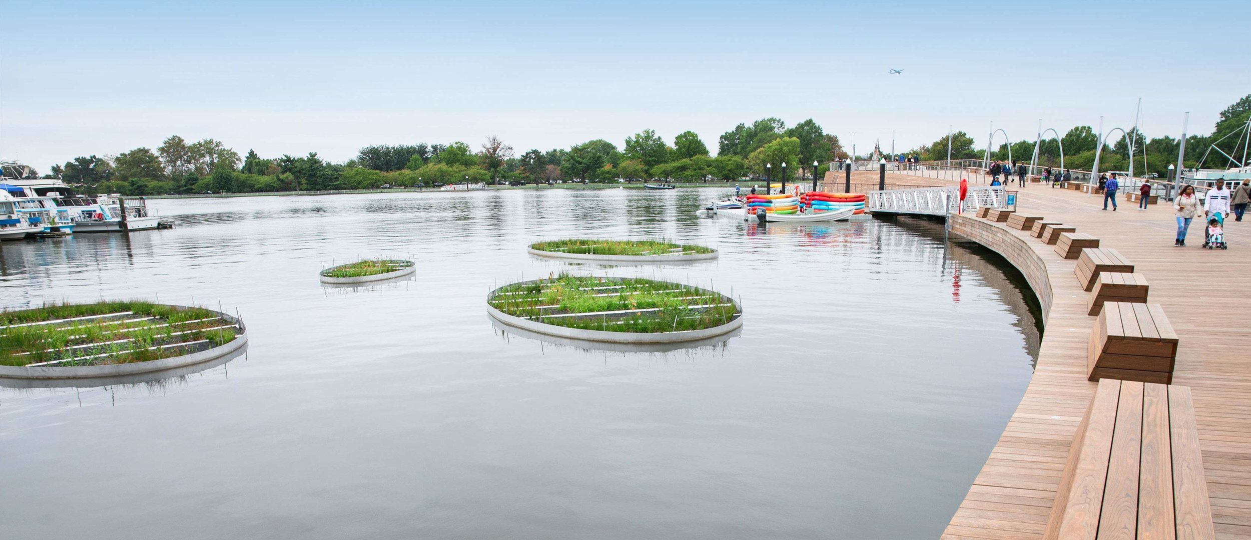 Nature-based solutions at the redesigned District Wharf. Photo Courtesy of the  District Wharf .