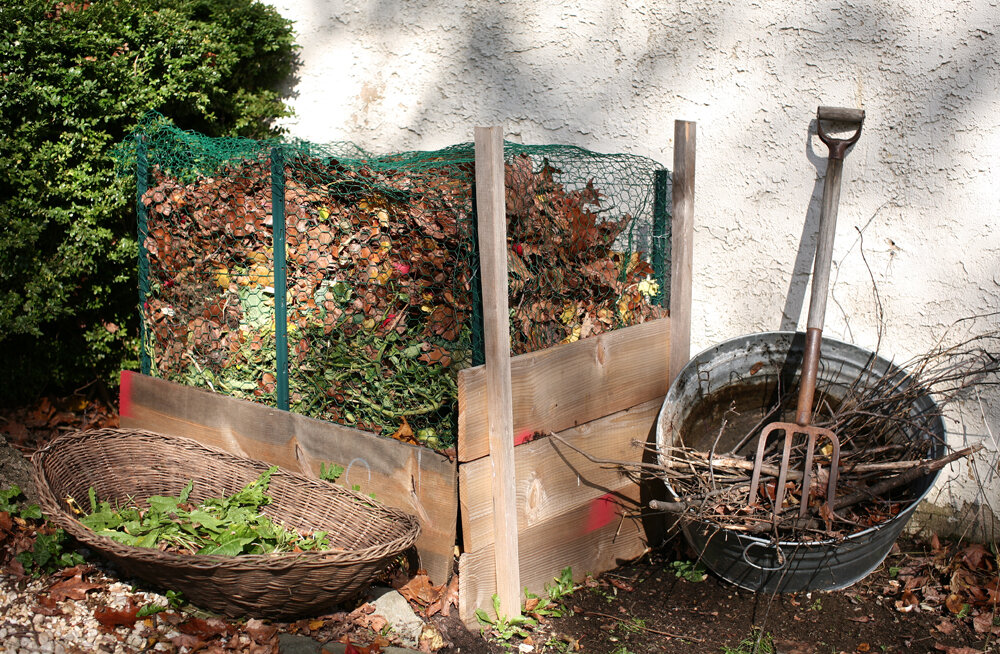 Fall Leaves in a Compost Pile. Photo courtesy of  Christopher Paquette .