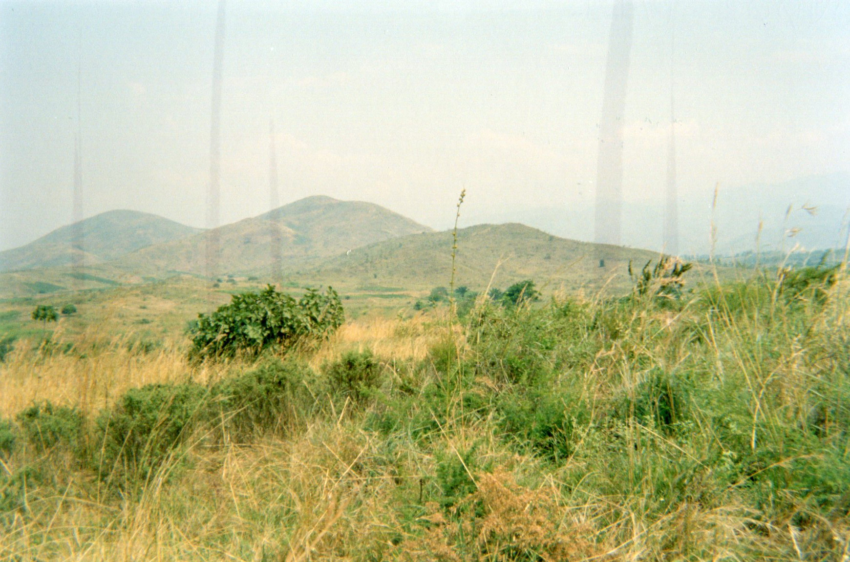 This photo shows the training area where we were trained in the armed groups.