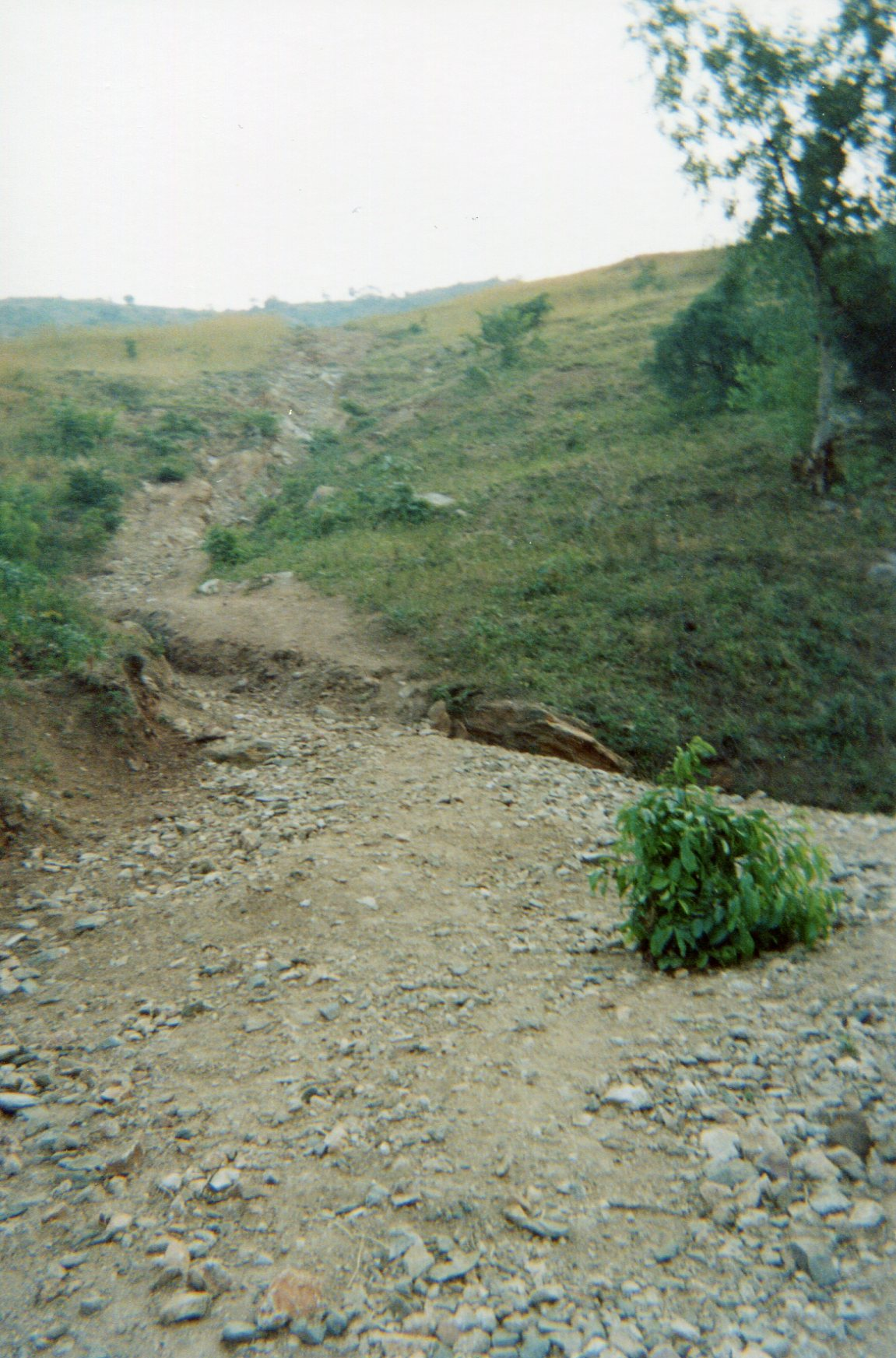 This shows the road where the children passed before joining the camp for the armed groups.