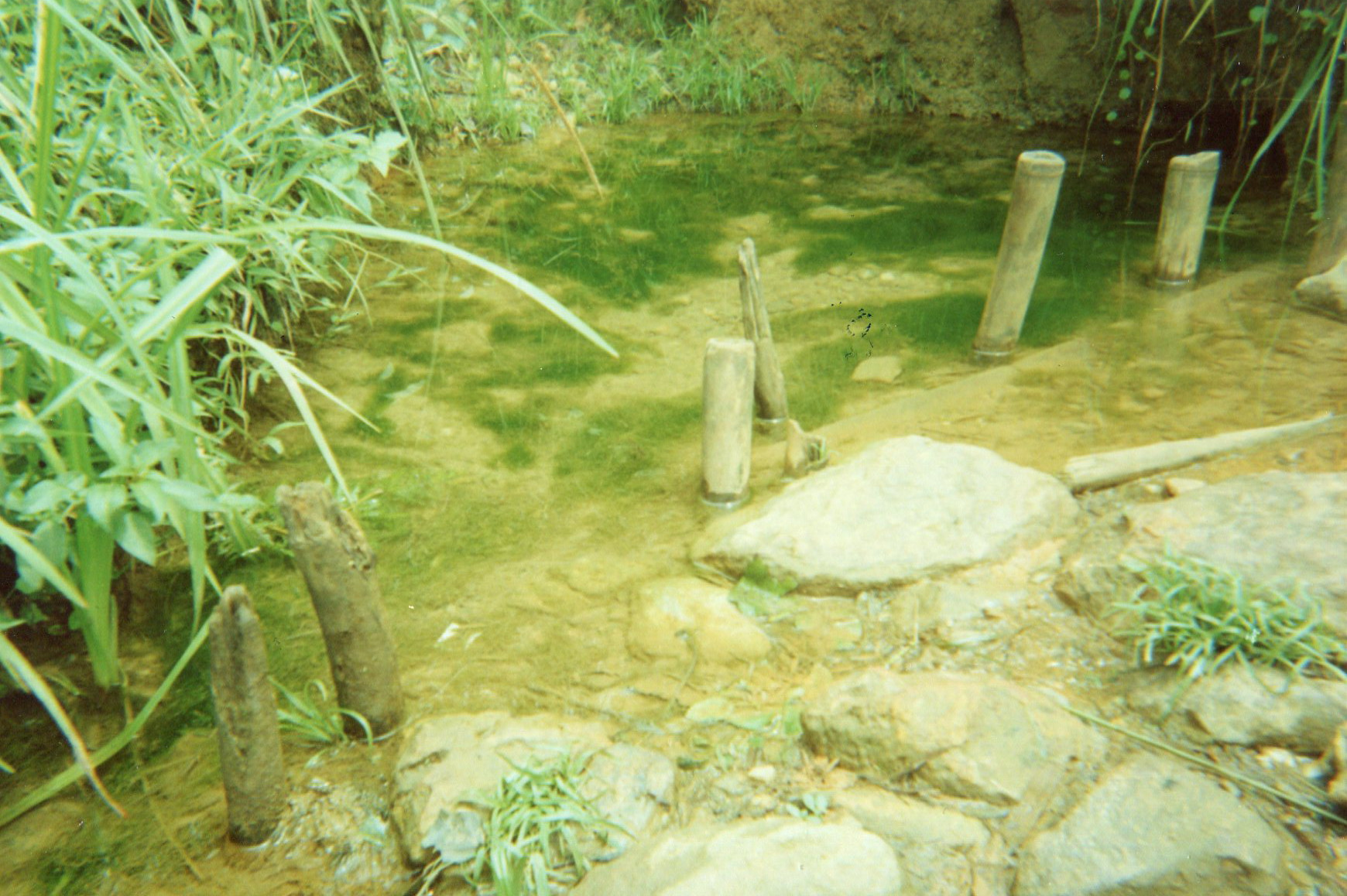 Build water point.