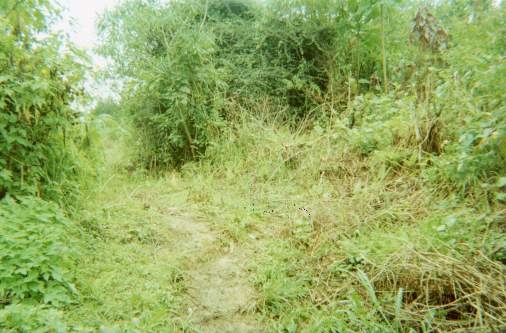 Concern: The villages were deserted during the war.