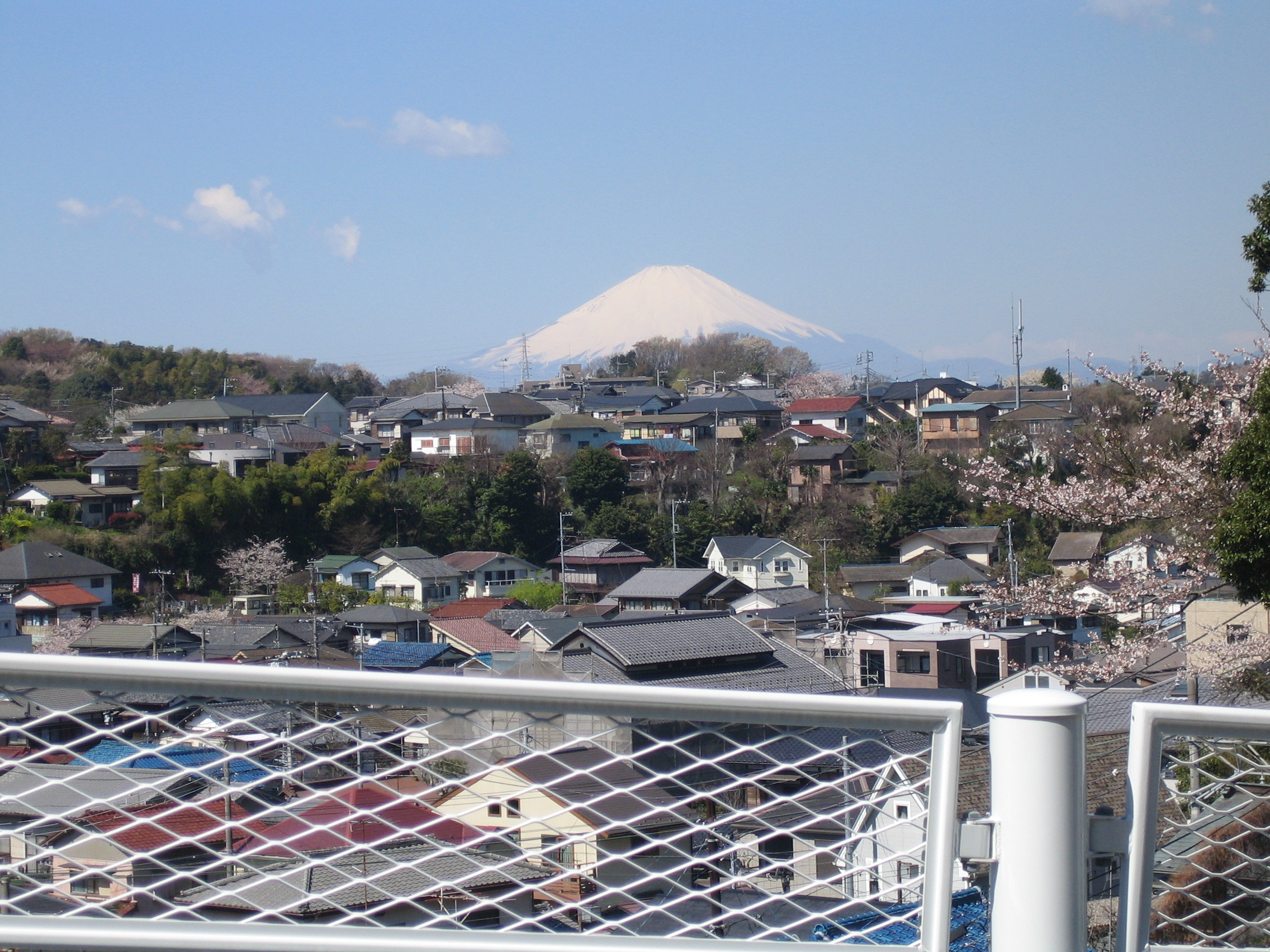 Fuji emerged only on the clearest of days.