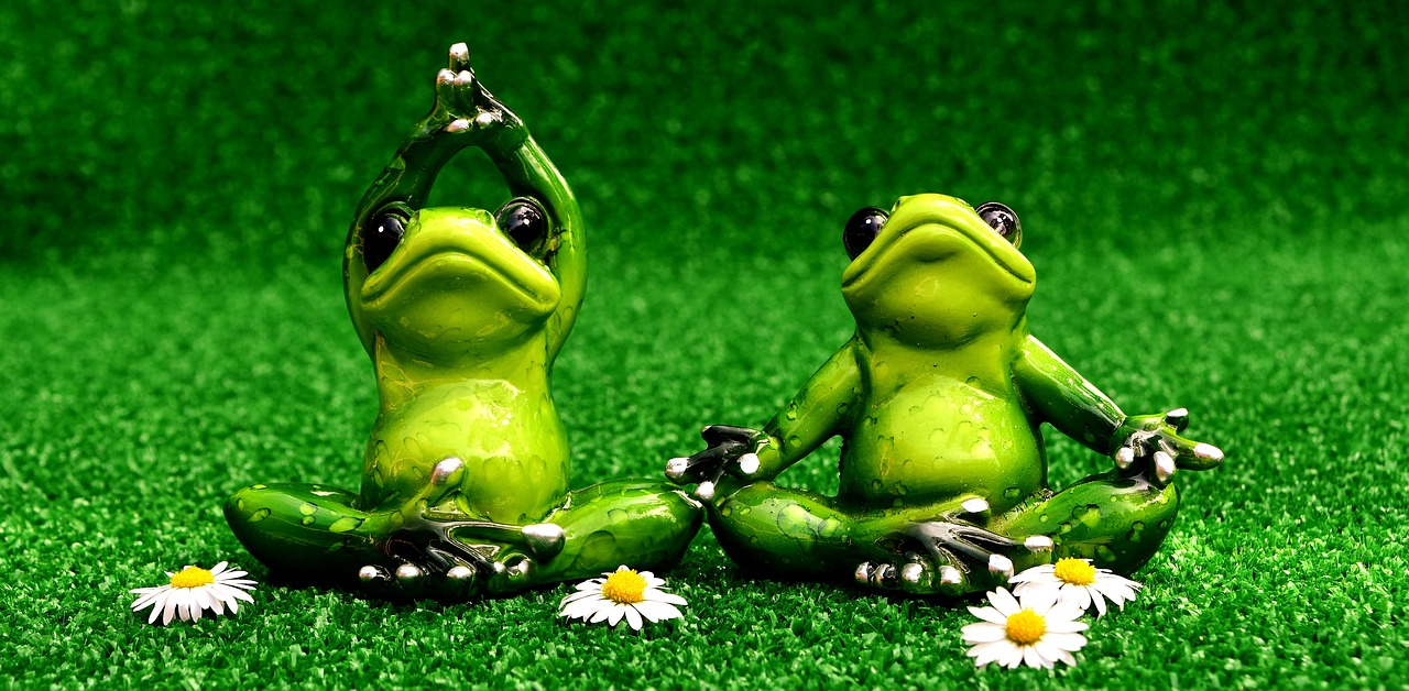 frogs-2403525_1280.jpg