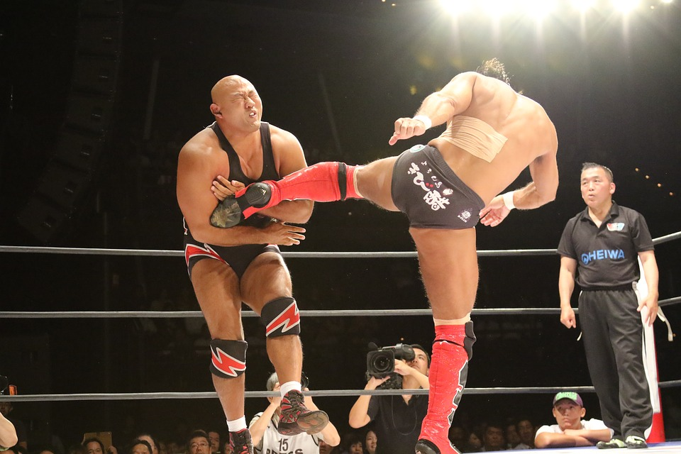 pro-wrestling-1650939_960_720.jpg