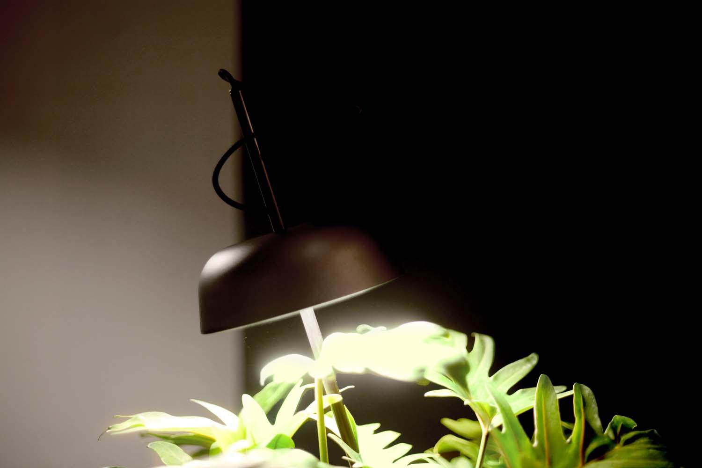 KI Light by Hallgeir Homstvedt.  Photo: Elementa