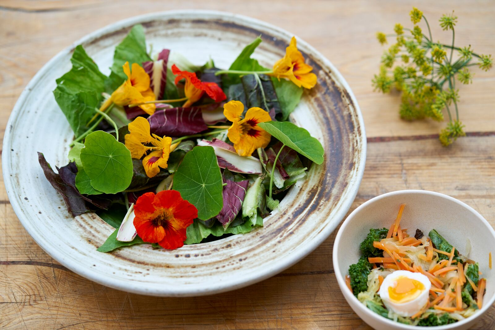 Early spring-salad with eatable flowers (nasturtium), kimche and sunny boiled eggs. Photo: Alexander Benjaminsen.