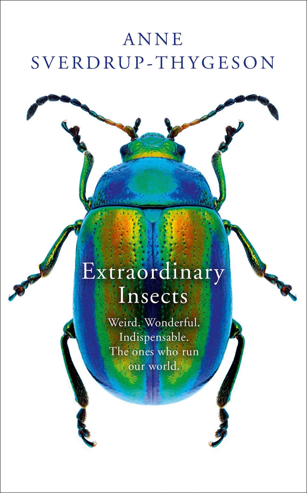 insektsbok.jpg