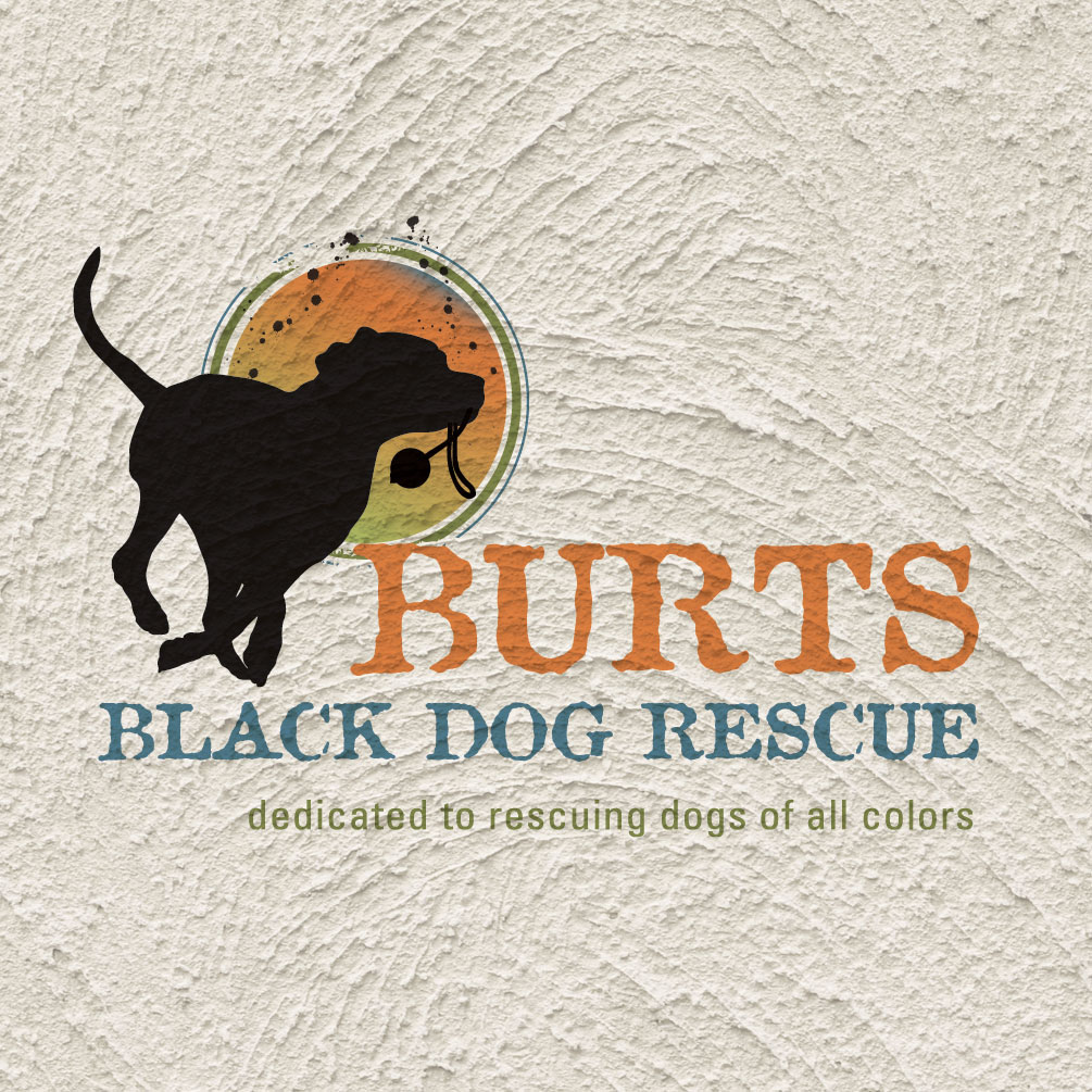 Black-Dog-Rescue.jpg