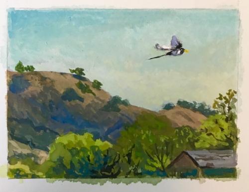 Magpie Flight, 3x5 gouache