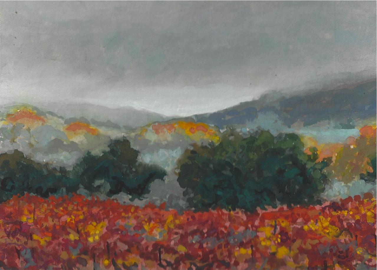 Vineyard Fog