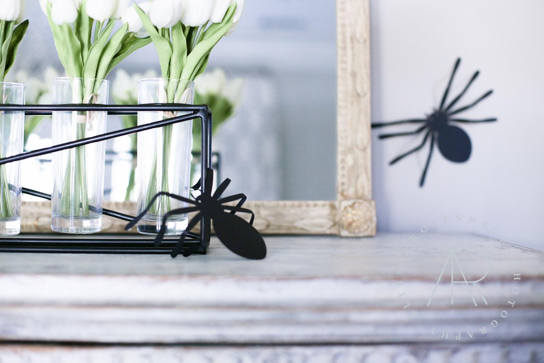 AR Photography Dallas Halloween-1.jpg