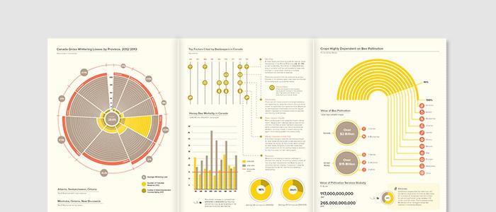 VITALITY OF HONEY BEES    — information design   ,illustration, print
