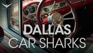 Dallas Car Sharks (Velocity)