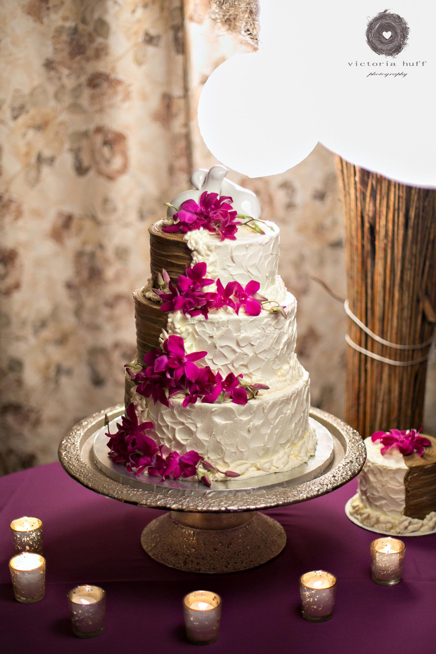 Wedding-Photography-Meagan-Kerske-Reynolds-Nashville-Tennessee-Centennial-Park-Gardens-of-Babylon-Wedding-cake.jpg