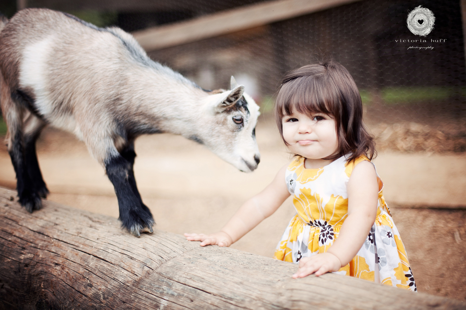Hadley-Murray-North-Georgia-Mountains-Suches-baby-toddler-photography-2.jpg