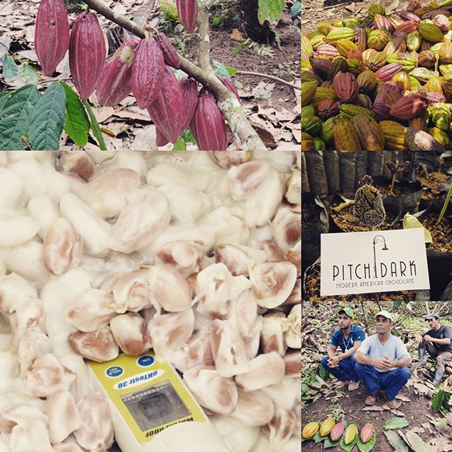 Pictures from our recent trip to Nicaragua for the National Cacao Conference that Pitch Dark Chocolate spoke at. Then off to visit farmers....more pictures to come. #supportlocal #supportfarmers #lovechocolate