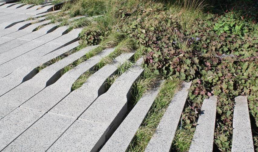 high-line-pavement-plants.jpg