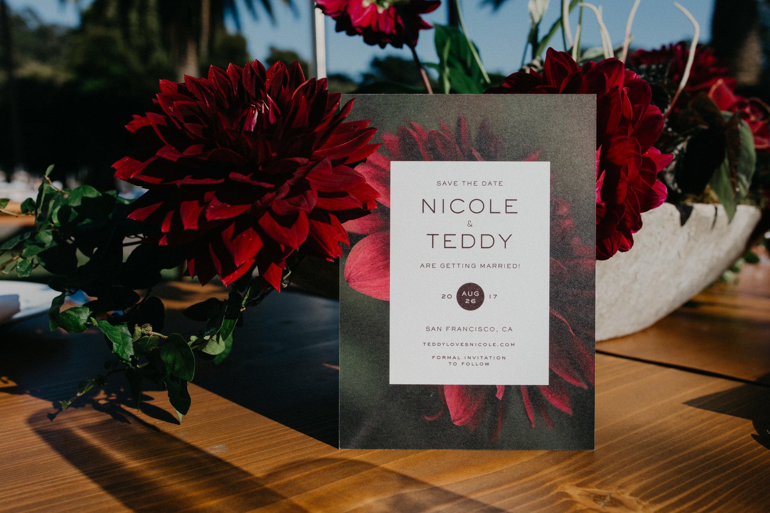 Nicole+Teddy-0909.jpg