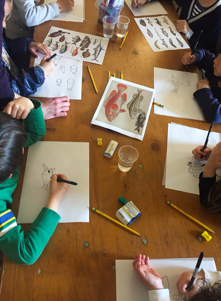 workshop drawing fish with Marco Somà from Illustrada's fb page