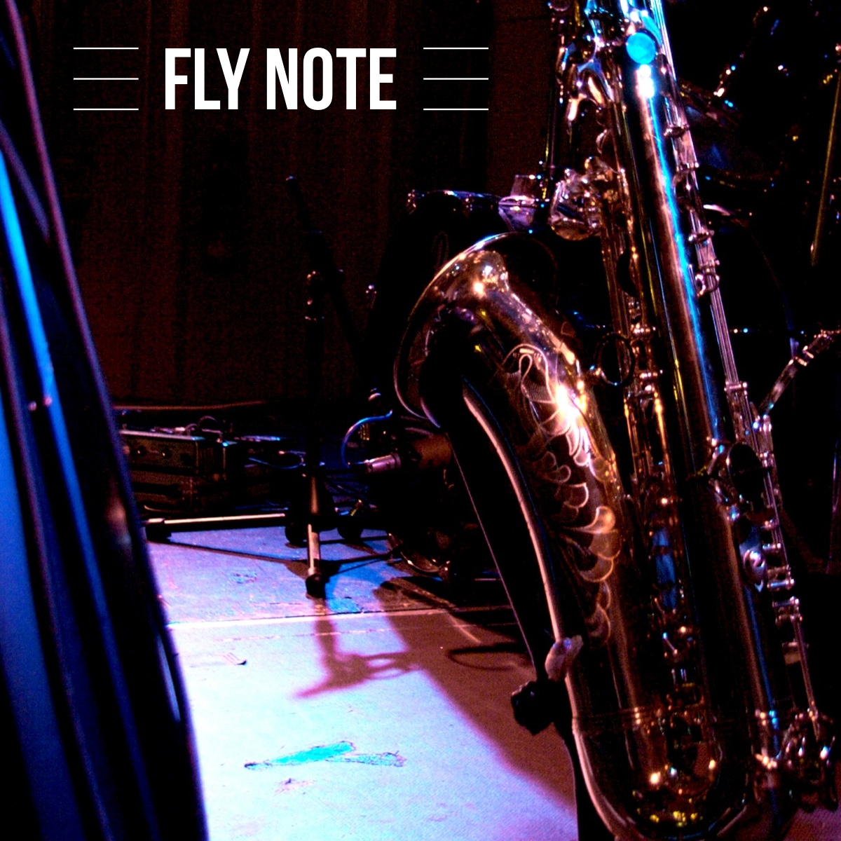 Fly Note Logo on Pic.jpg