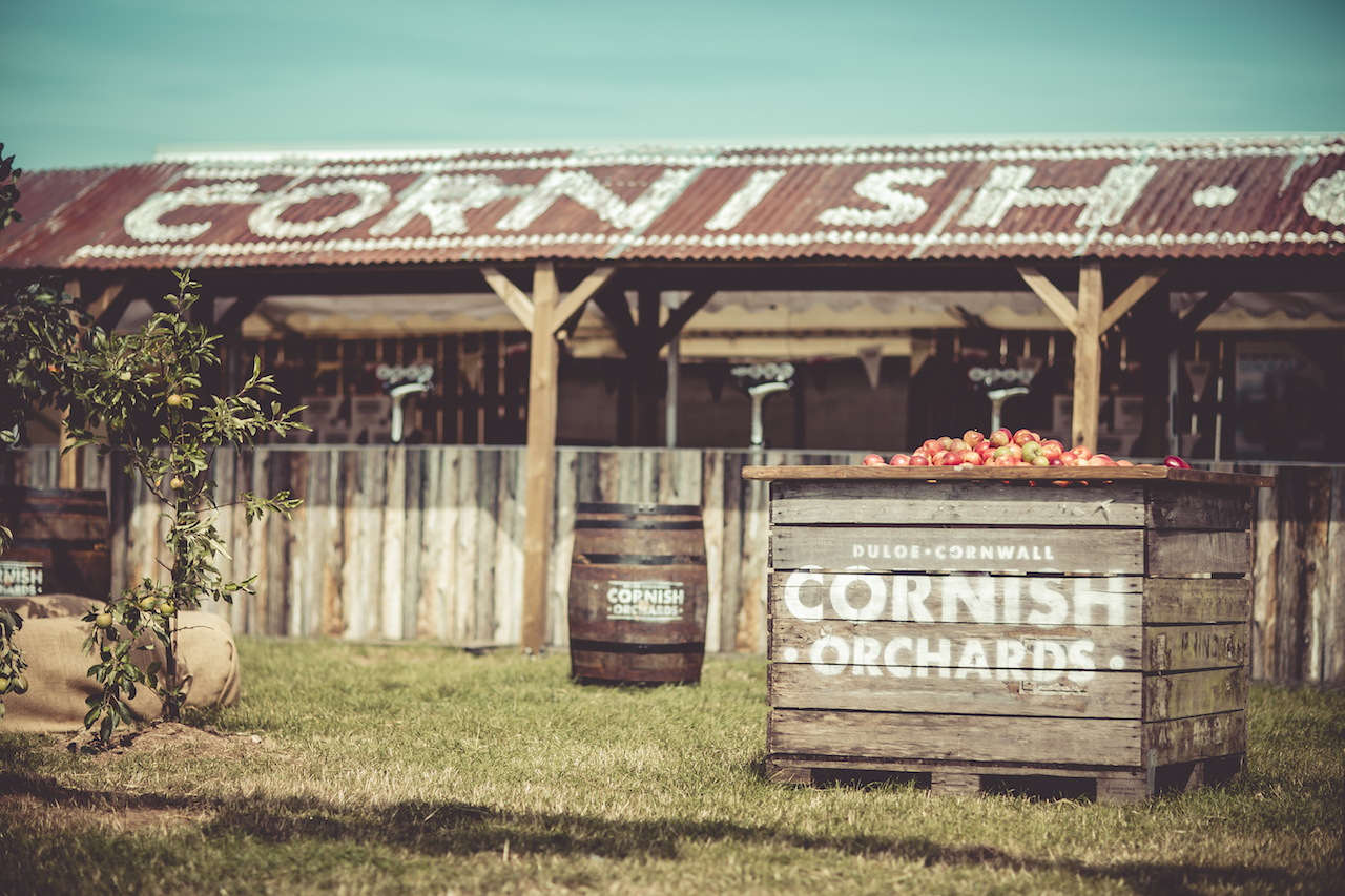 Cornish Orchards - The Orchard