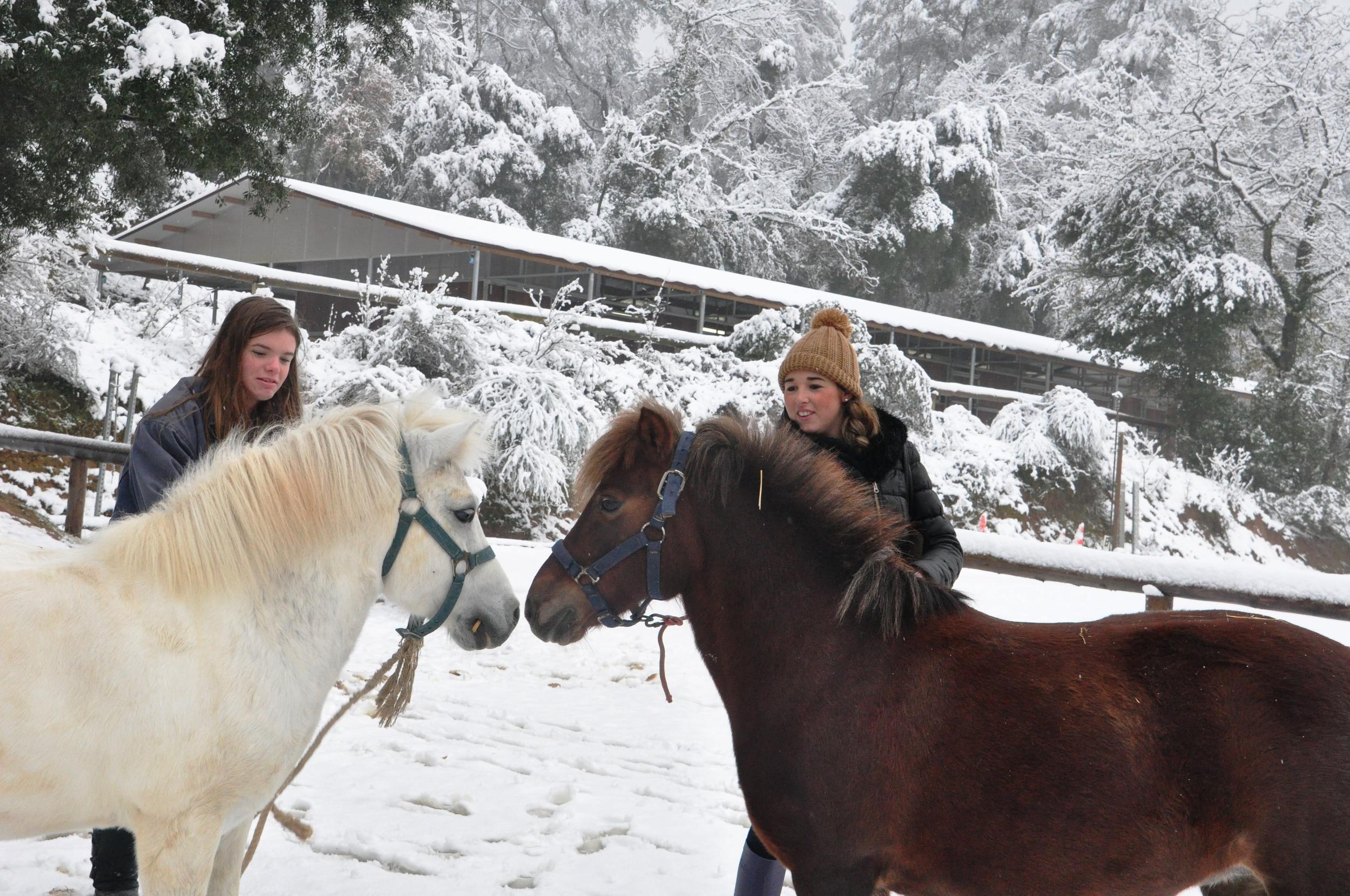 Carlota y Aniel Nieve 2.JPG