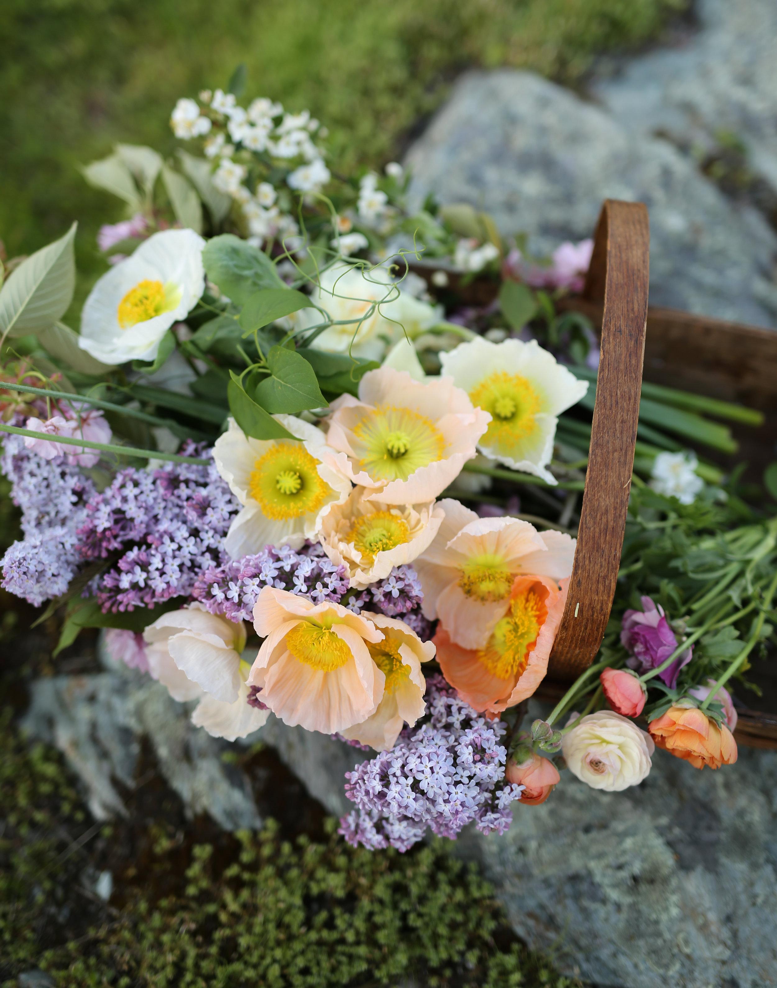 Npt Life Easter Shoot  (77 of 104).jpg