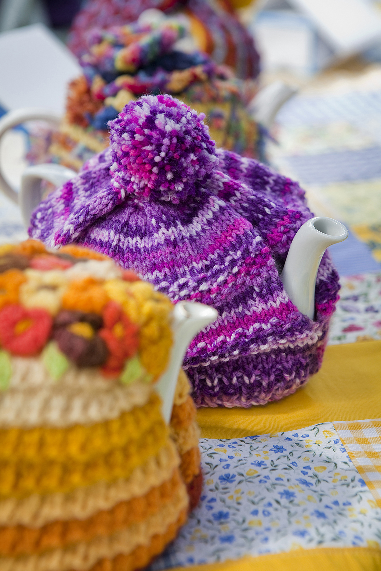 UC Tea Party008.jpg