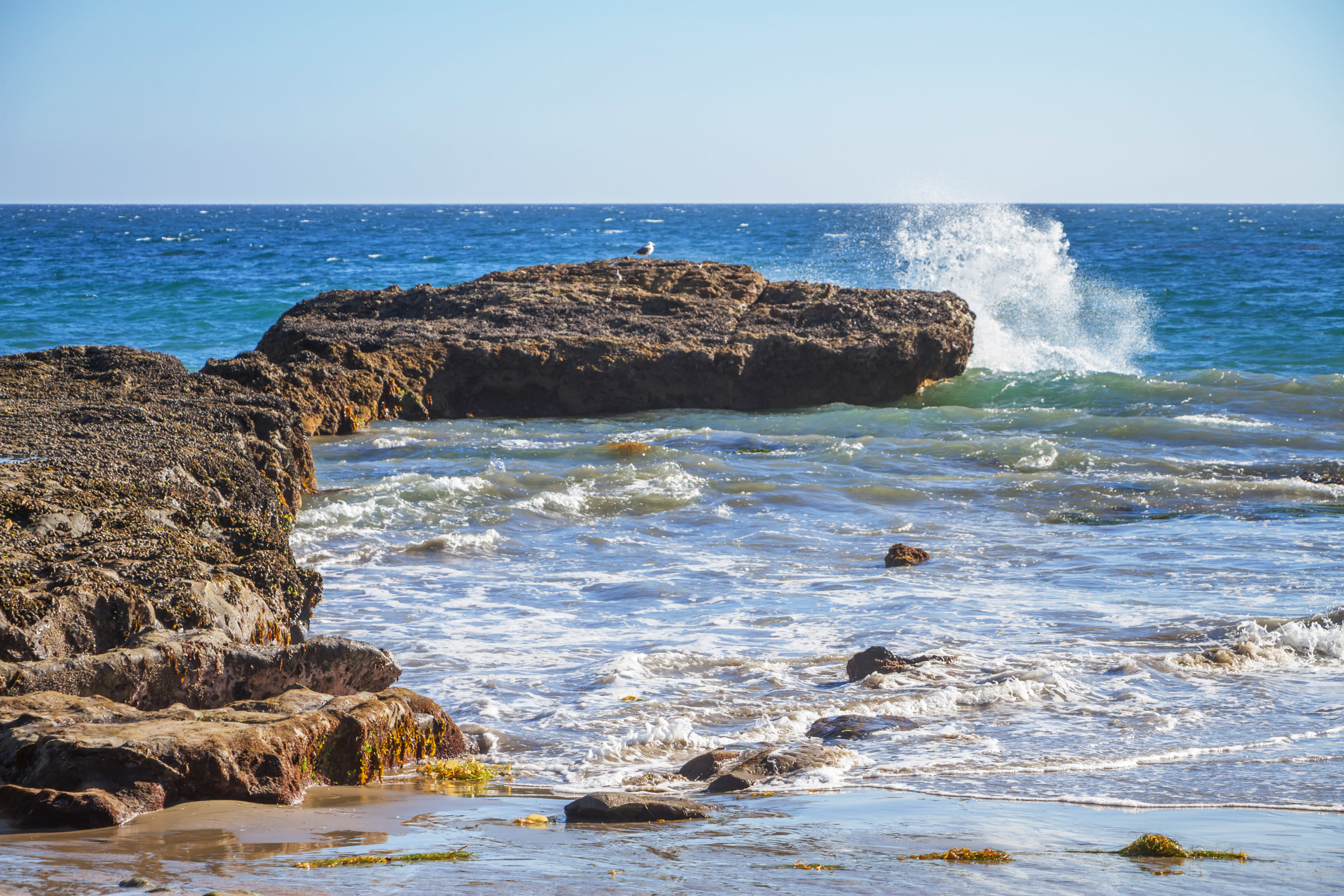 10_Sea View.jpg