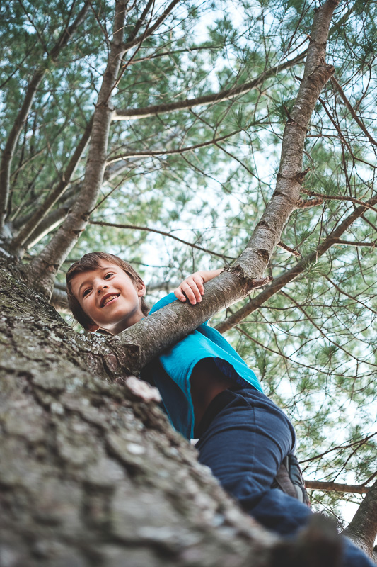 Tellement le fun de grimper aux arbres :)