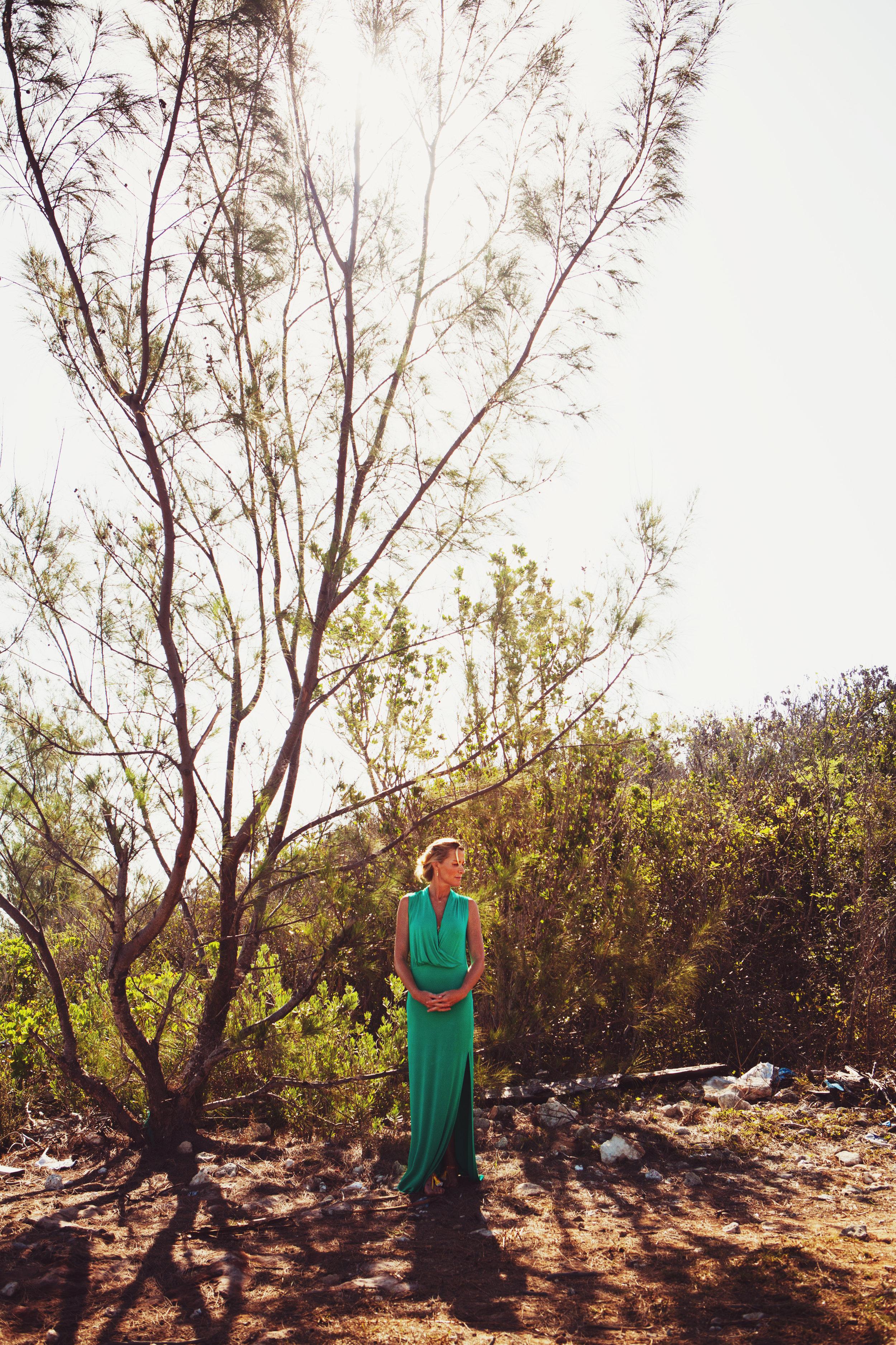talltree.jpg