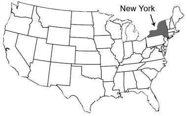 New-York-state-USA