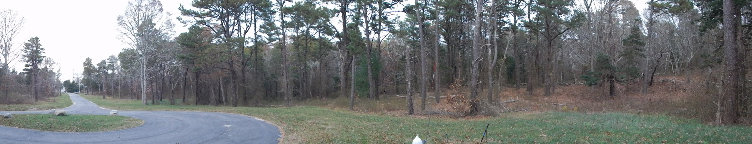 View from back of property to Main St.