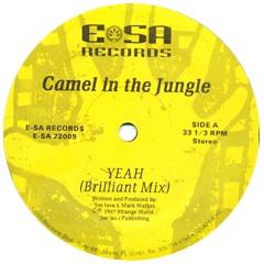 6. Camel In The Jungle - Yeah (ESA).jpg