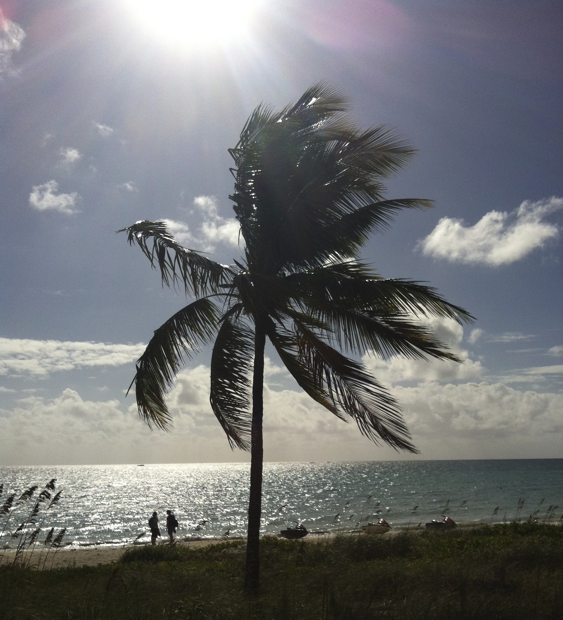 A pre-studio morning walk on Taino Beach, Freeport, Bahamas. © Lisa Codella