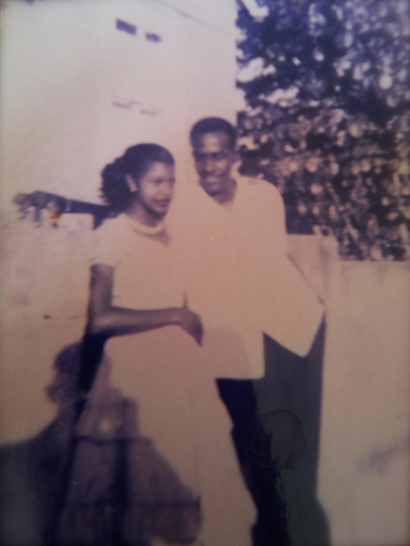 Lovebirds, for over 60 years.