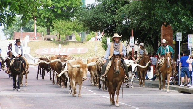Ft-Worth-Texas-Cattle-Drive.jpg