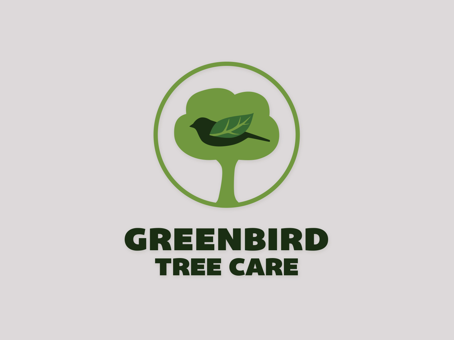 GreenBird Tree Care    Services:  logo refresh \\ color palette + application \\ font suite + application
