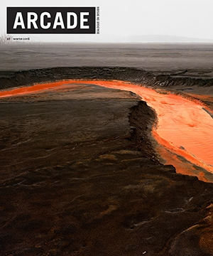 ARCADE Magazine    Winter 2016  Farshid Moussavi Interview