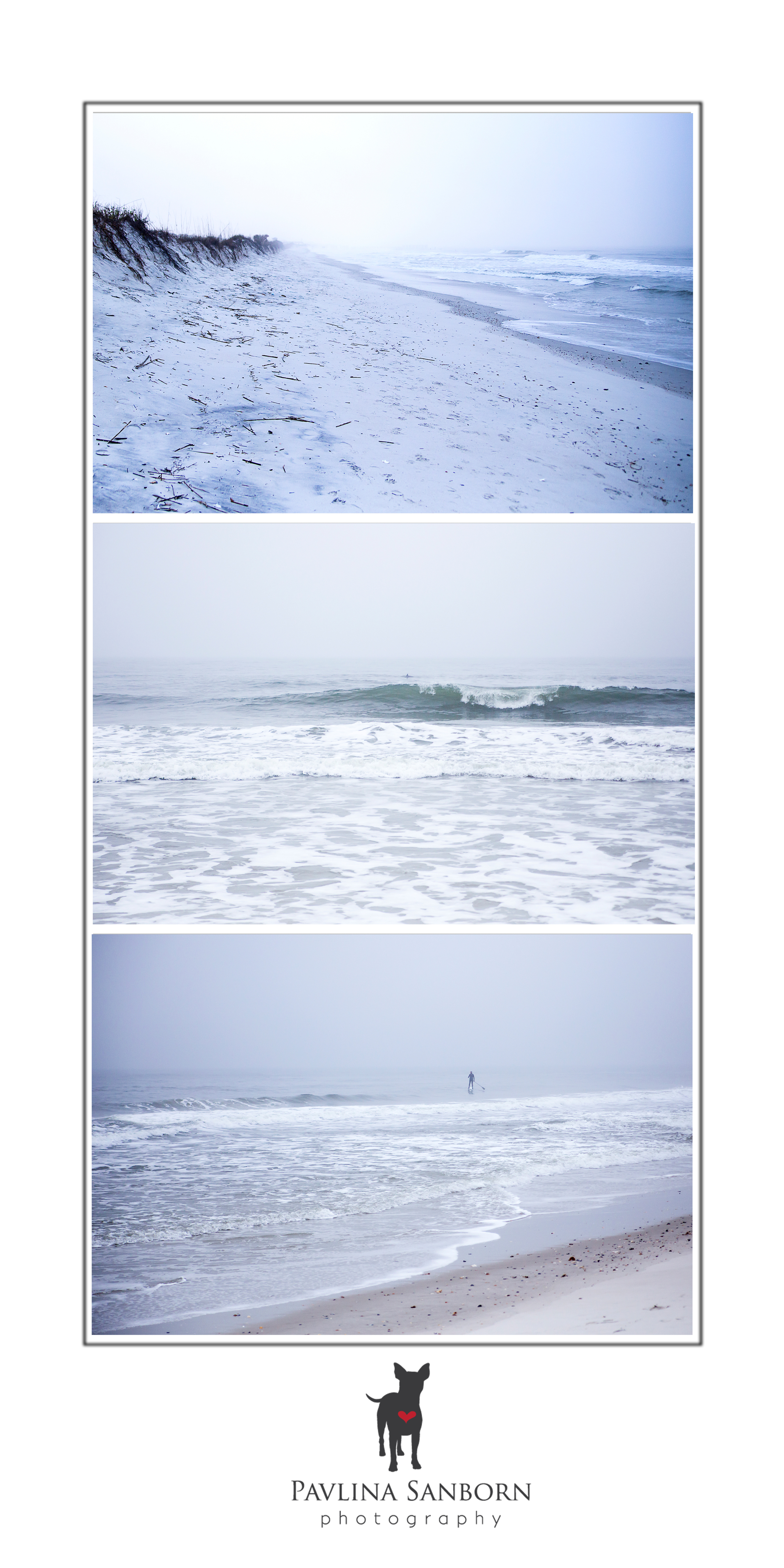 The morning foggy, cold, and beautiful beach. In the middle photo you can see a dolphin. There were schools of dolphins playing close to the beach...