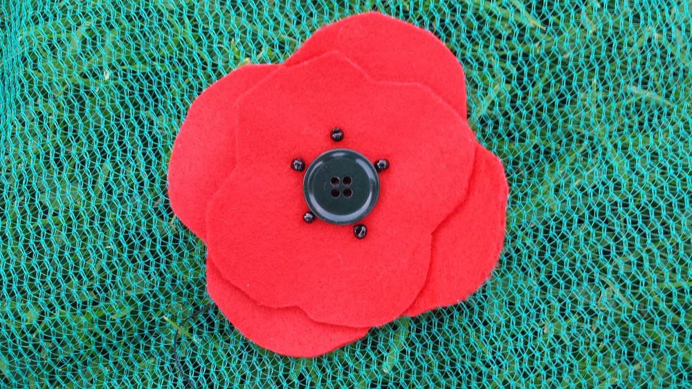 some of the poppies we will be making