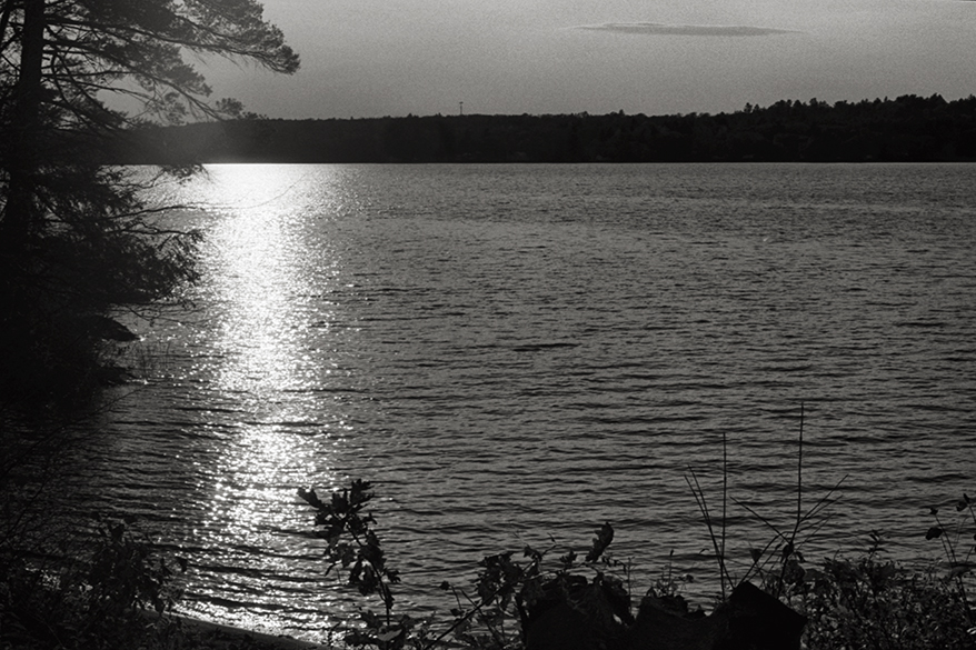 Late afternoon, Pattee Pond, November 2013