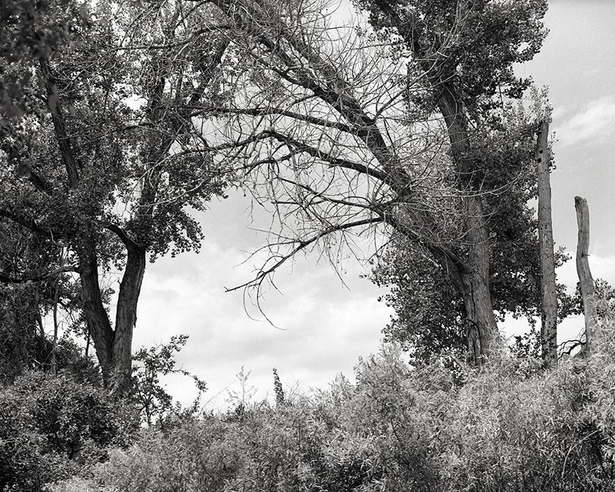 Colorado_June_2015_005.jpg