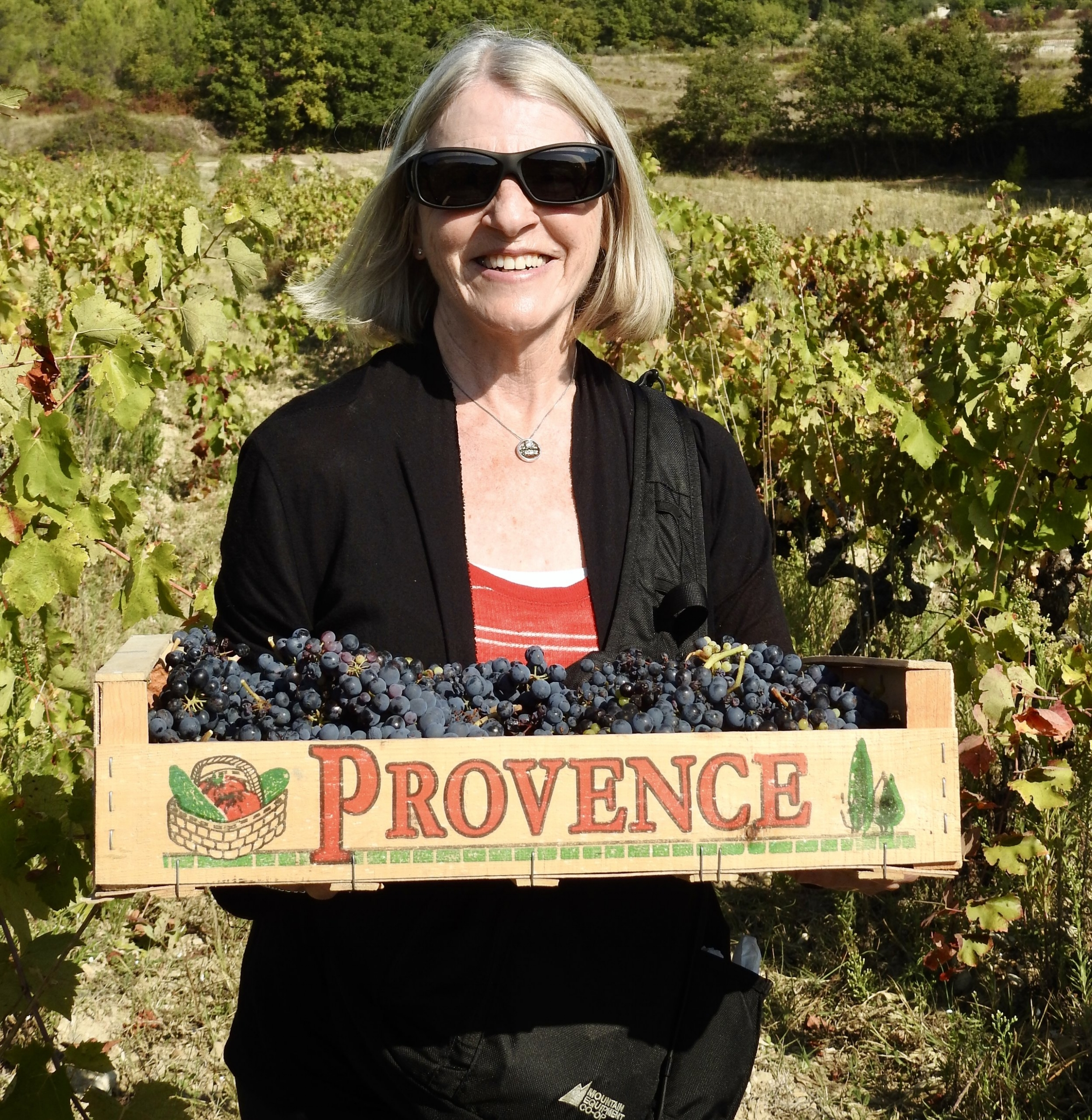 provence france tour review