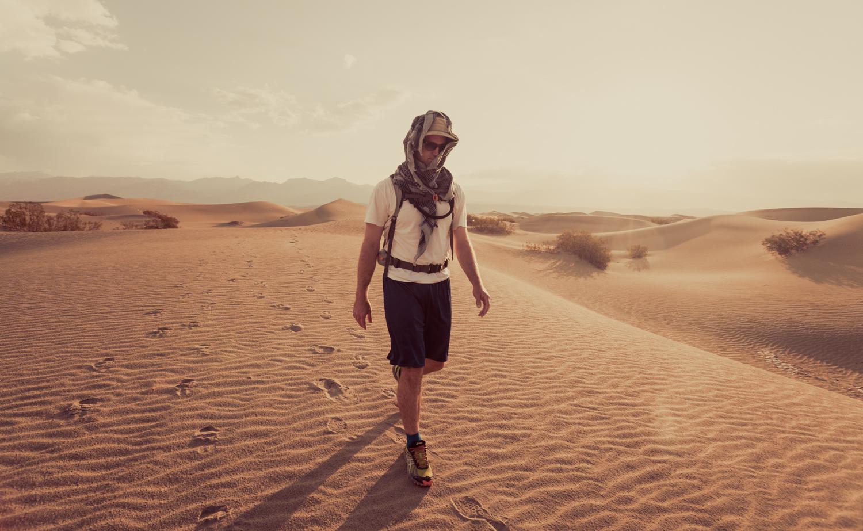 DesertWalk.jpg