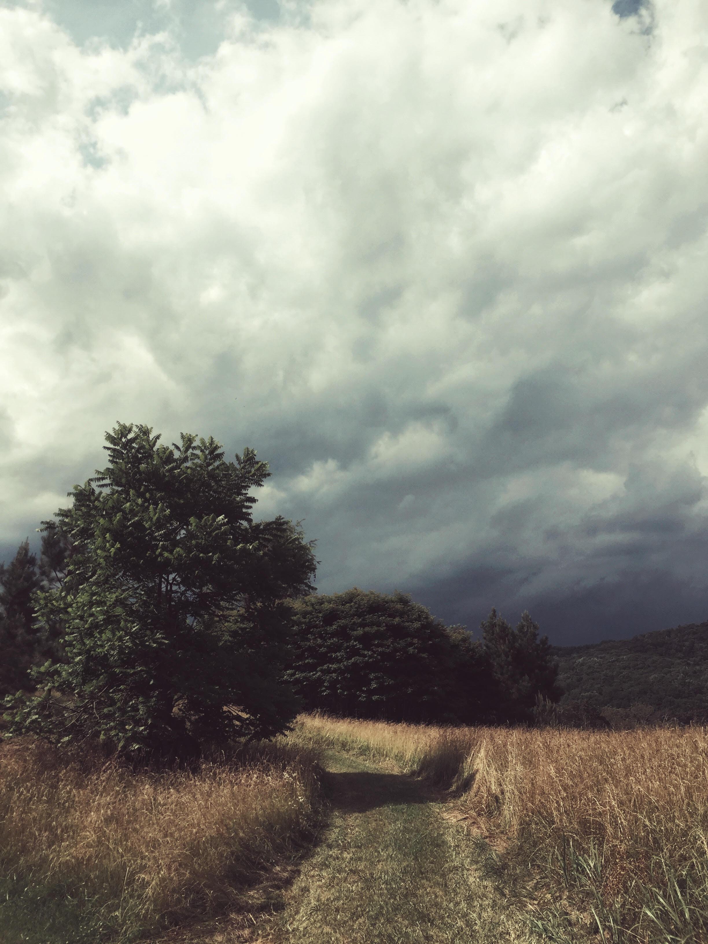 Shenandoah.jpg