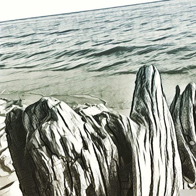 Digital Illustration of Lake Michigan and drift wood based on a photo I shot in Muskegon, MI