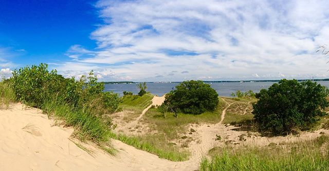 Overlooking Muskegon Lake on a sand dune.