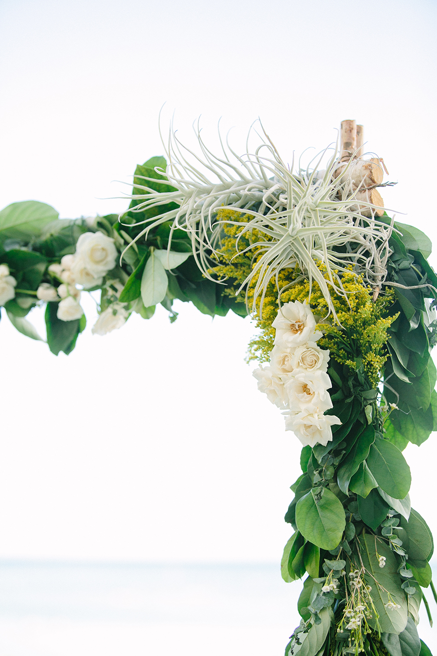 #airplant and #foliage birch ceremony arch by Passion Roots | What a Day! Photography | Oahu, Hawaii